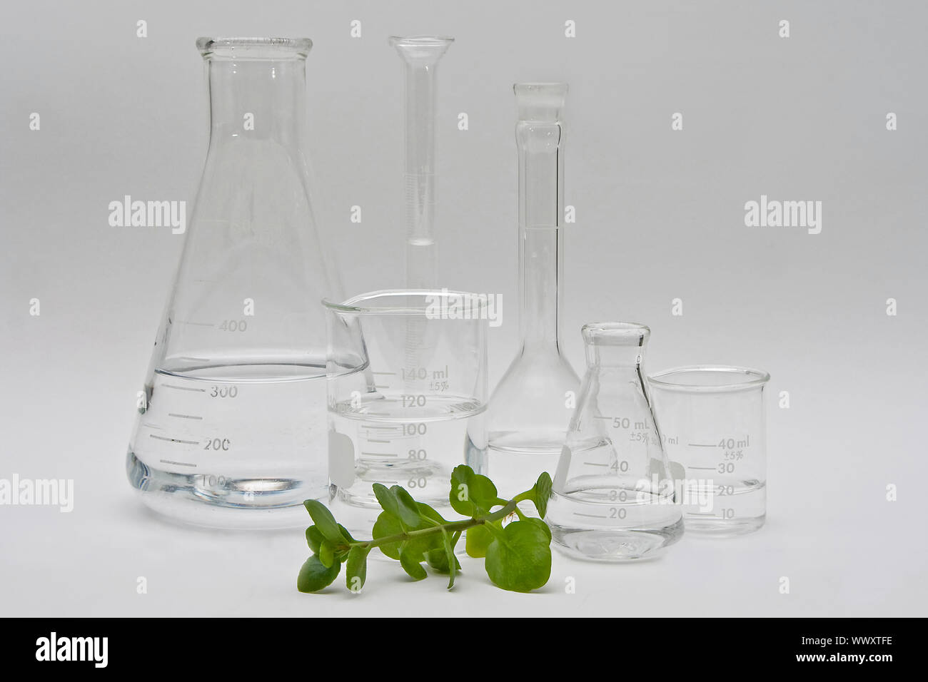 Clean and clear chemistry for cosmetic beauty products; clear liquids in a variety of bottles and flasks on a white background and a plant in the fron Stock Photo