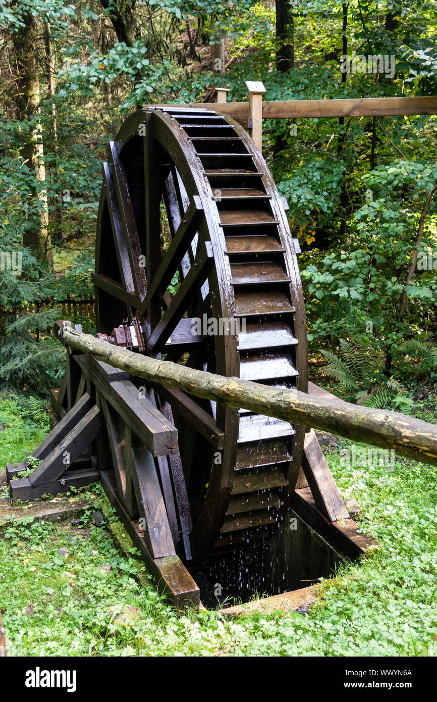 Autumn in the Harz National Park Stock Photo