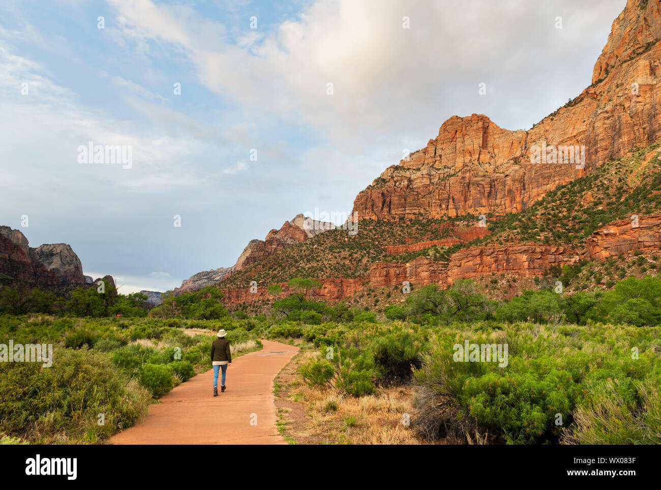 Hiking the Pa'rus trail, Zion National Park, Utah, United States of America, North America Stock Photo