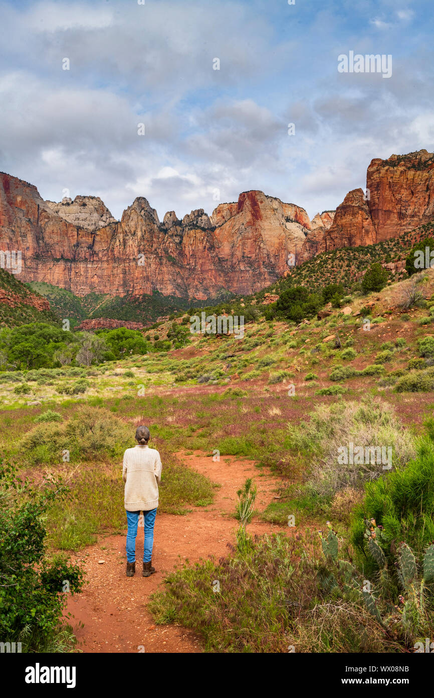 Temples and Towers of the Virgin, Zion National Park, Utah, United States of America, North America Stock Photo