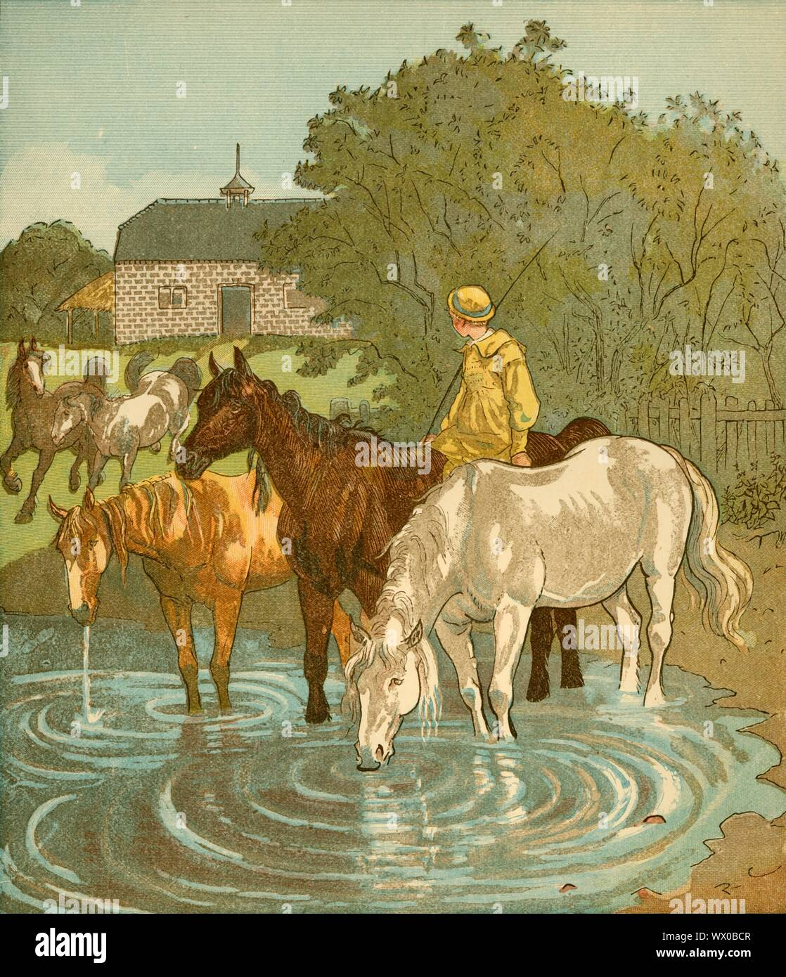 """The Farmer's Boy watering horses, c1881. 'When I was a farmer, a Farmer's Boy, I used to keep my master's horses'. From """"The Farmer's Boy"""" written and illustrated by Randolph Caldecott. [Originally published in 1881 as part of Caldecott's 'Picture Books' series] Stock Photo"""