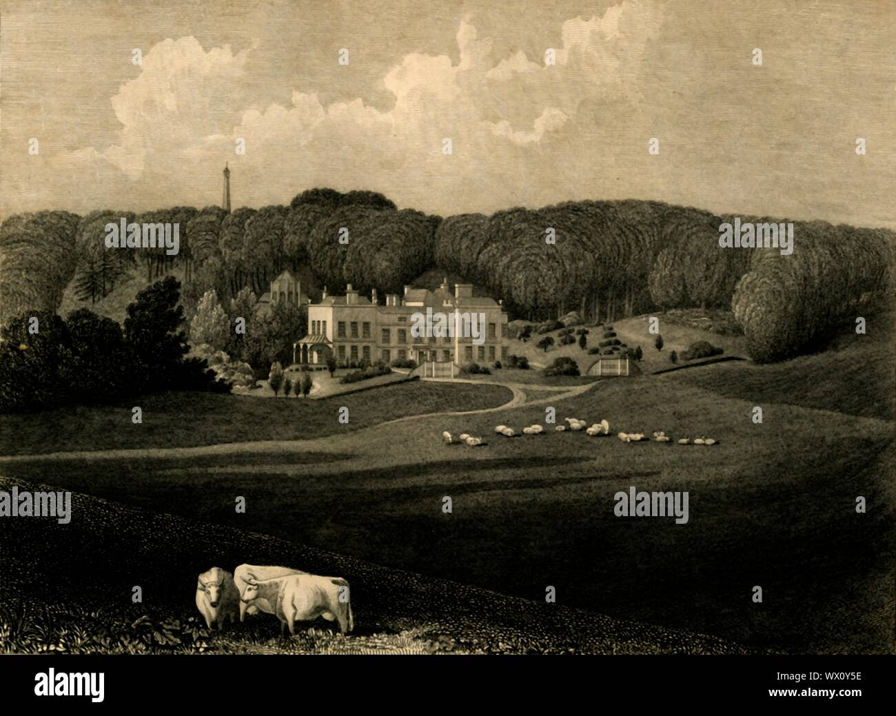 """'Muntham', 1835. Manor house in Horsham, home of FW Frankland until 1840. Antique engraving by CJ Smith after drawing by Thomas Henwood. From """"The History, Antiquities, and Topography of the County of Sussex, Volume the Second"""", by Thomas Walker Horsfield, F.S.A. [Baxter, Sussex Press, Lewes; Messrs. Nichols and Son, London, (1835)] Stock Photo"""