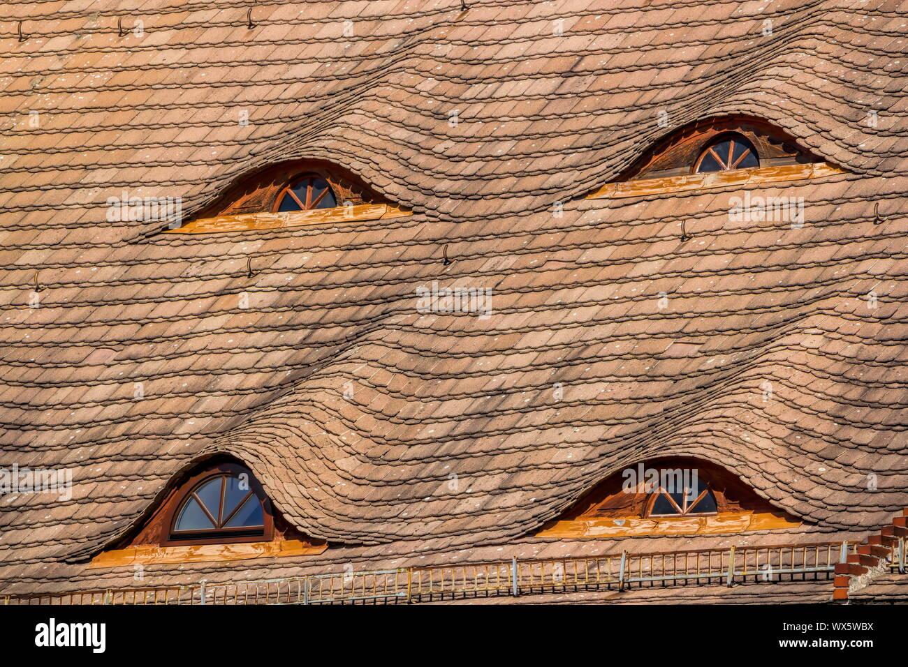 Torgau, Skylight Stock Photo