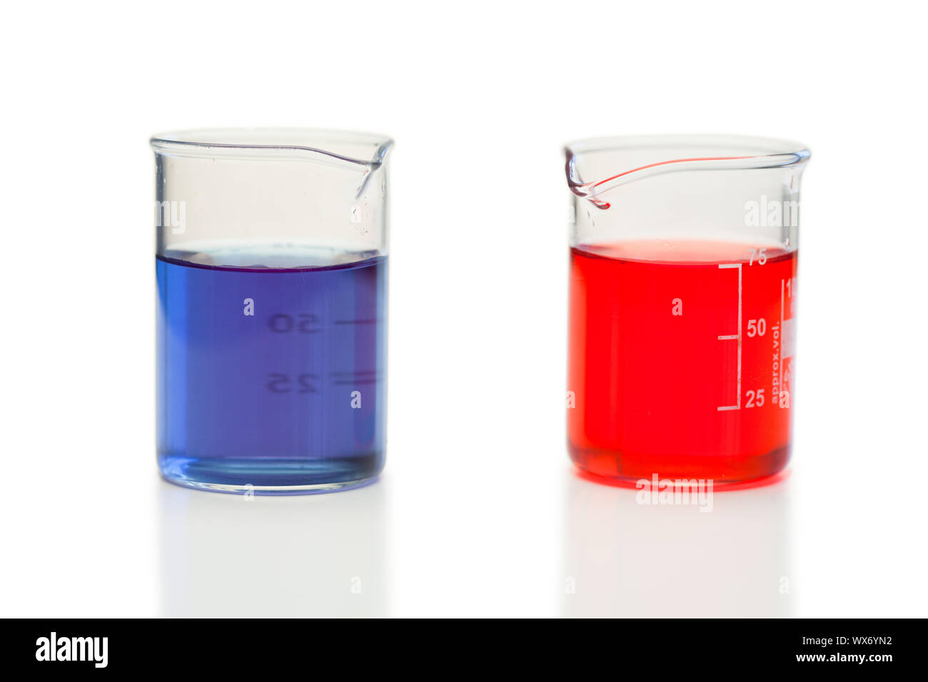 Red and blue liquid in beakers on a white background Stock Photo