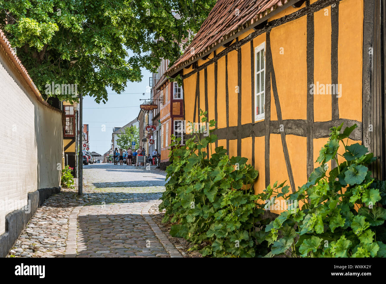 a yellow idyllic half-timbered house with green hollyhocks, at a narrow lane in the historic center of Faaborg, Denmark, July 12, 2019 Stock Photo