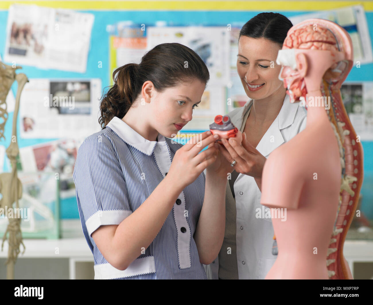 High School Student With Teacher in Biology Class Stock Photo