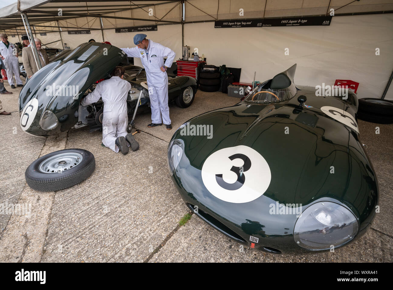 Jaguar D Type. Vintage cars from the 1930's to the 1950's in the paddock during the Goodwood Revival car festival, UK. Stock Photo