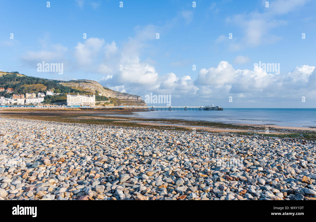 A view of Llandudno's pier and pebble beach.  The Great Orme headland is behind and a blue sky is above. Stock Photo