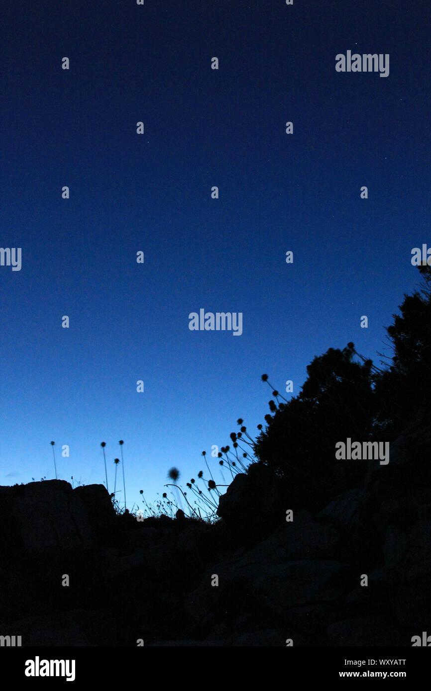 Abenddämmerung Silhouette Stock Photo