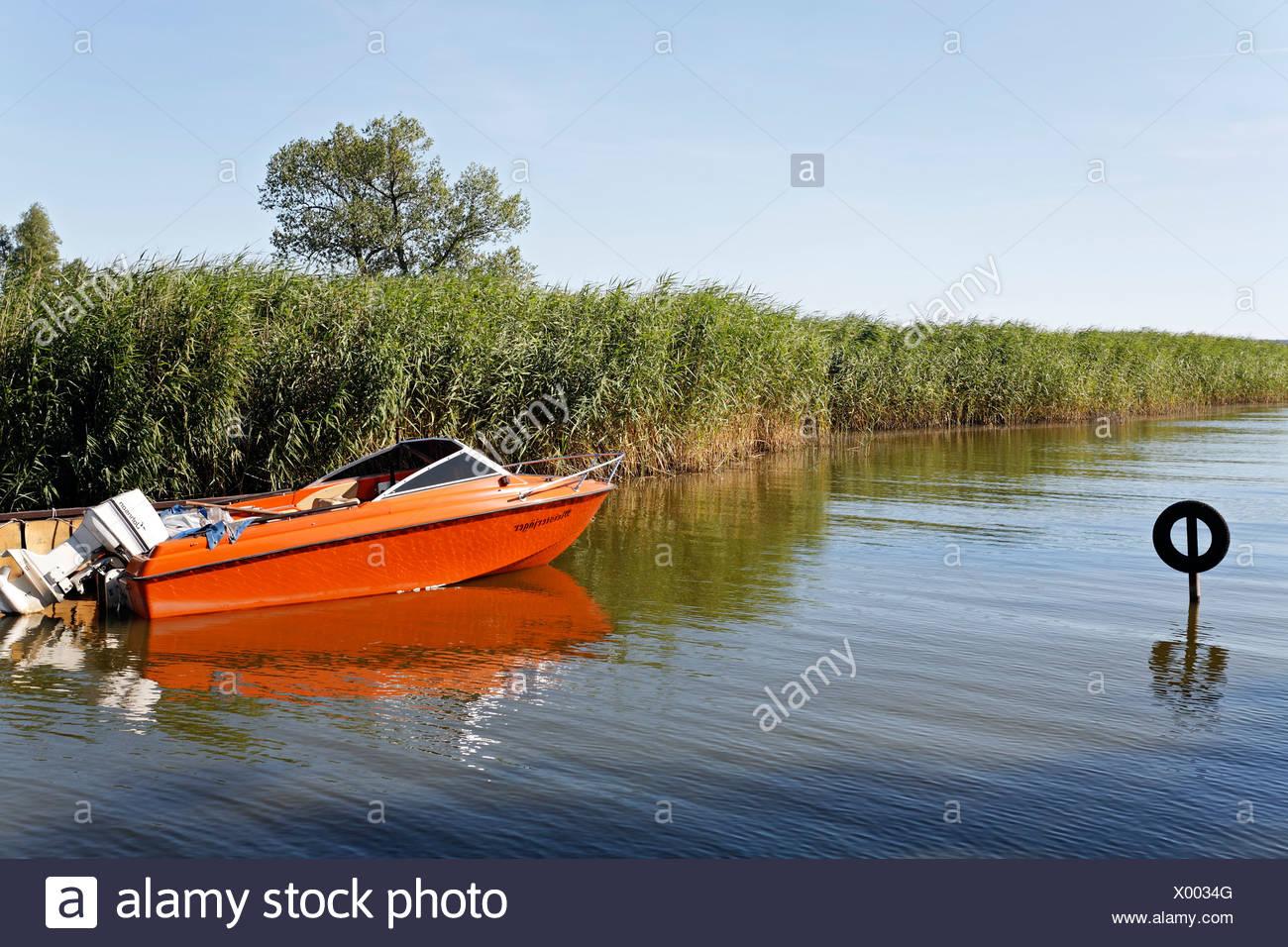 Idyllic boat harbour in the Achterwasser Bay near Warthe, Lieper Winkel, Usedom Island, Baltic Sea, Mecklenburg-Western Pomeran Stock Photo