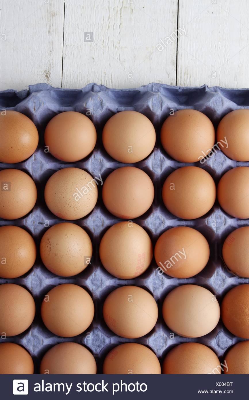 fresh hens eggs - Stock Image