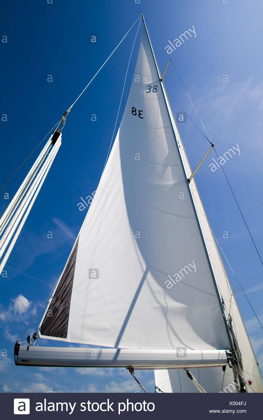 Mainsail of a sailing yacht - Stock Image