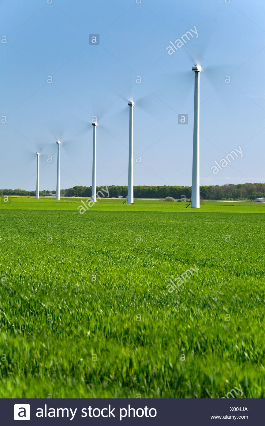 Wind turbines in a row at peaceful fields against clear blue sky - Stock Image
