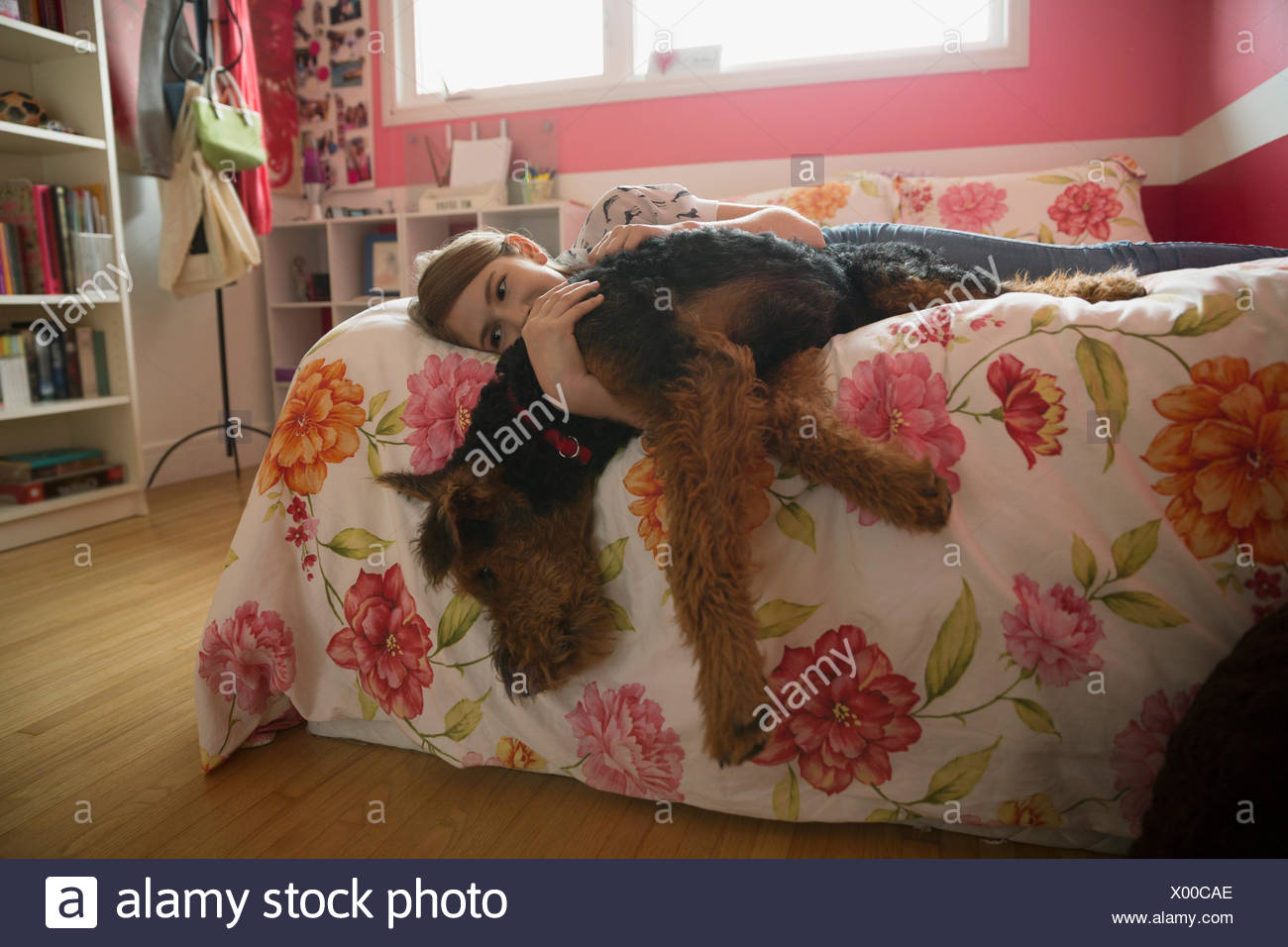 Girl hugging dog hanging off bed Stock Photo