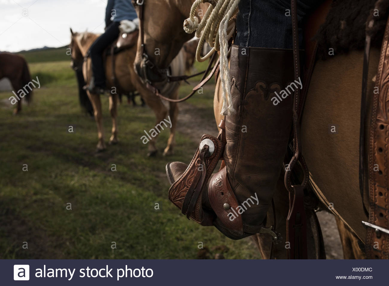 Close up of womans cowboy boot in stirrup, riding horse. - Stock Image