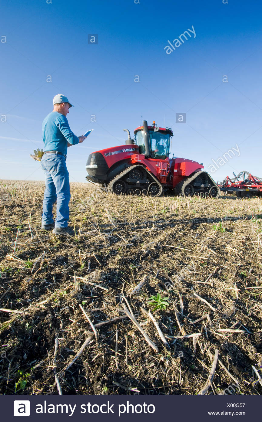 farmer using a tablet in front of a tractor and air seeder, planting winter wheat in a zero till field containing canola stubble, near Lorette, Manitoba, Canada - Stock Image