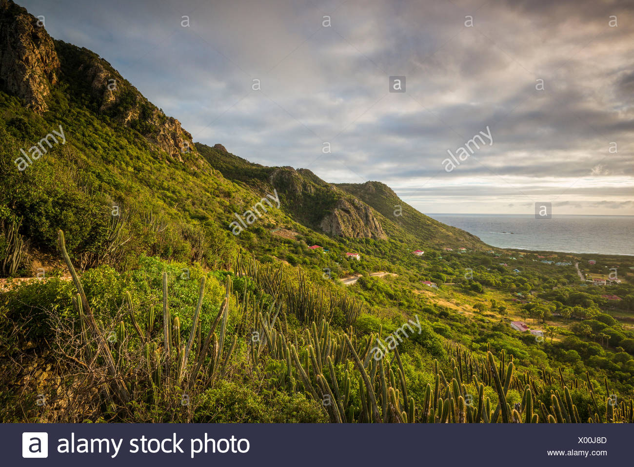 French West Indies, St-Barthelemy, Grand Fond, elevated landscape, dawn - Stock Image