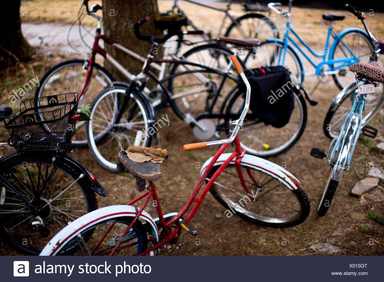 A quiver of cruiser bikes outside a neighborhood house in Sandpoint, Idaho. - Stock Image