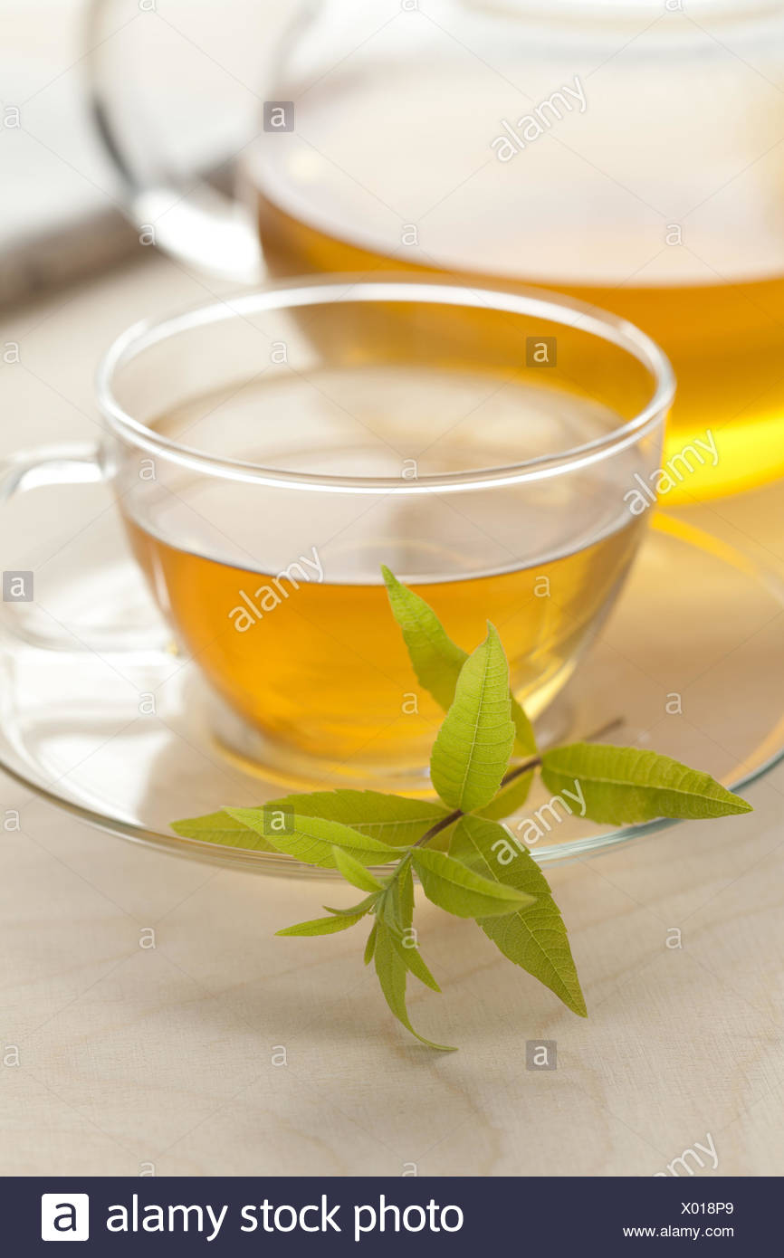 Glass cup of vervain tea Stock Photo: 275394737 - Alamy