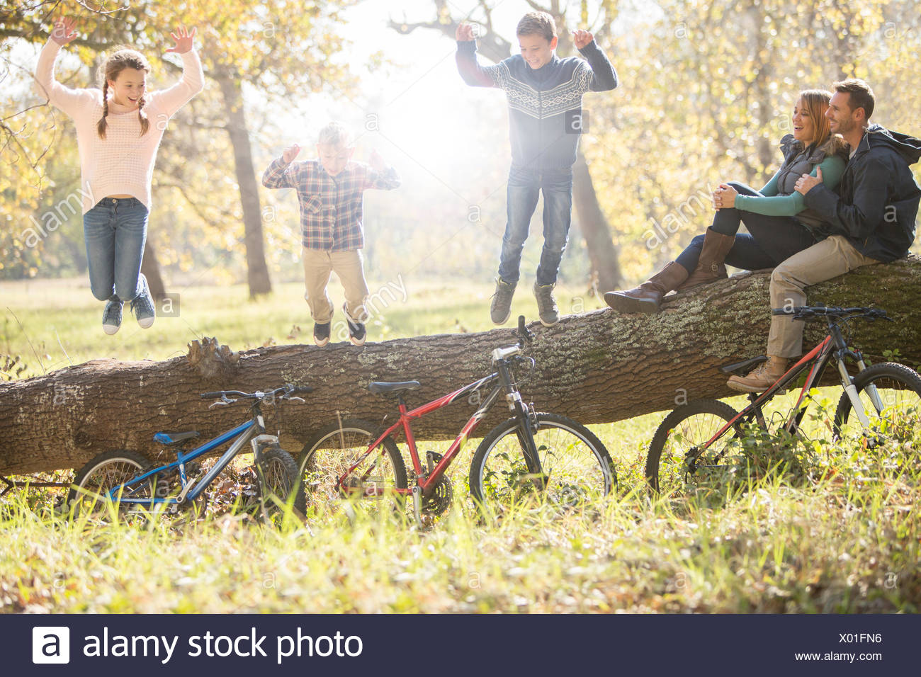 Family playing on fallen log with bicycles in woods Stock Photo