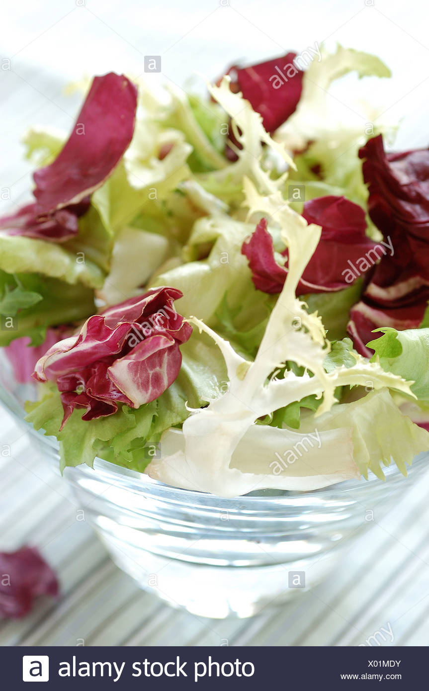 Mesclun wild salad leaves and shoots - Stock Image