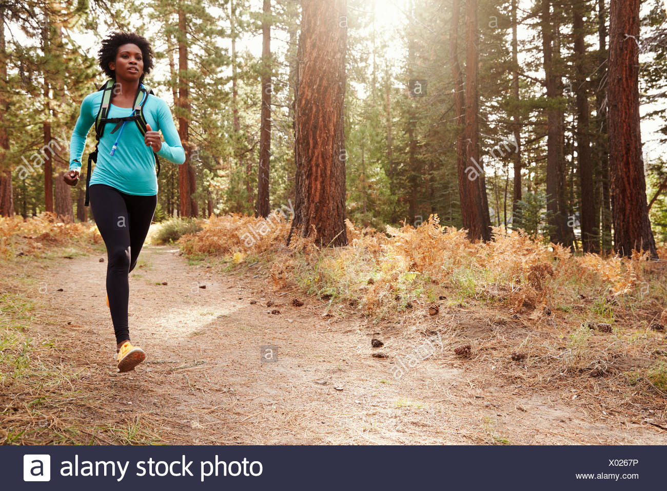 African American ethnicity woman running in a forest - Stock Image