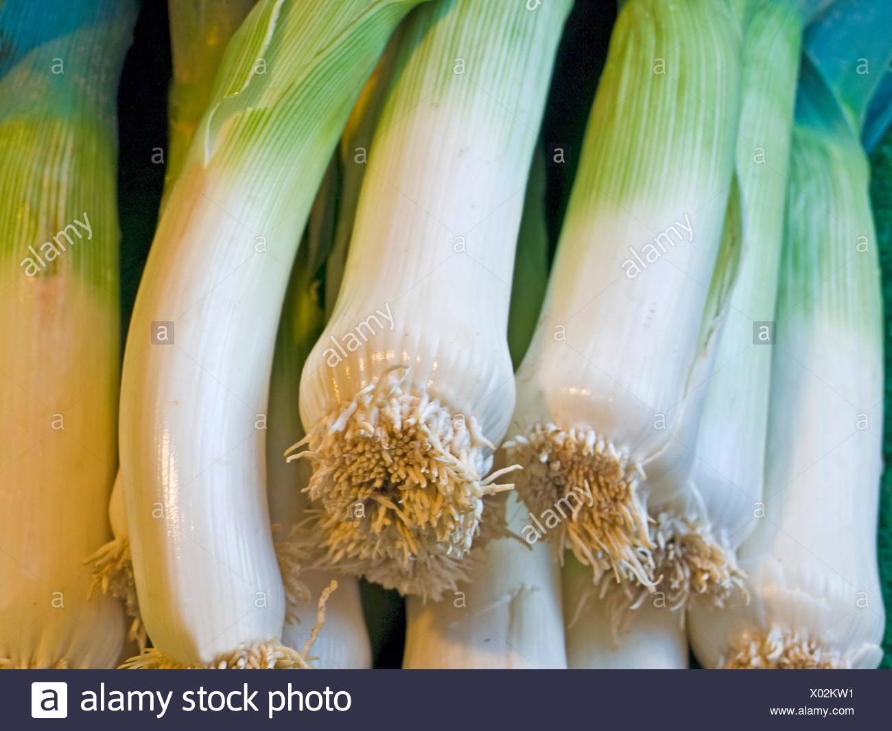 leek at a farmer market. - Stock Image