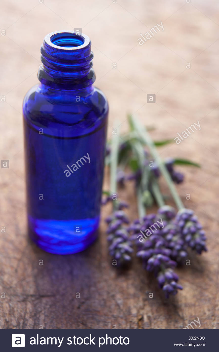 Lavender flowers and scent bottle - Stock Image