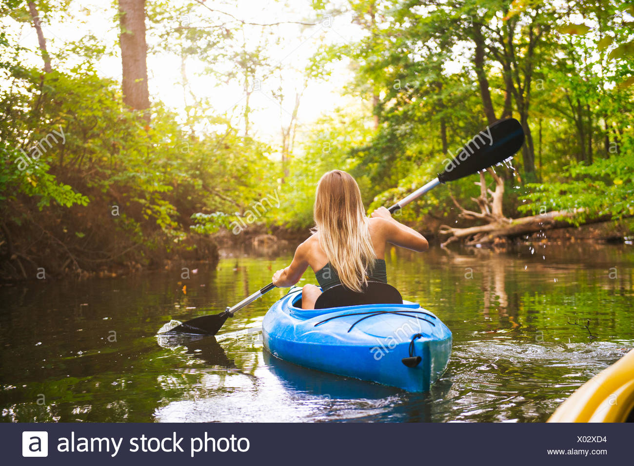 Rear view of young woman kayaking on forest river, Cary, North Carolina, USA - Stock Image