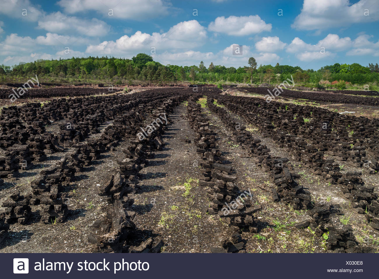Ireland, County Offaly, Doon, Turf drying in summer sun - Stock Image