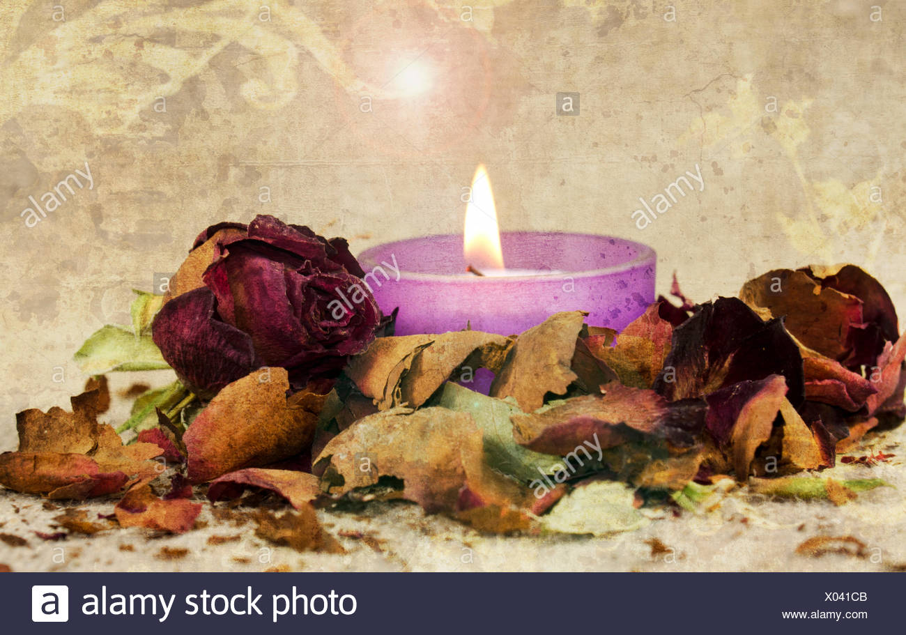 Poetic composition - Stock Image