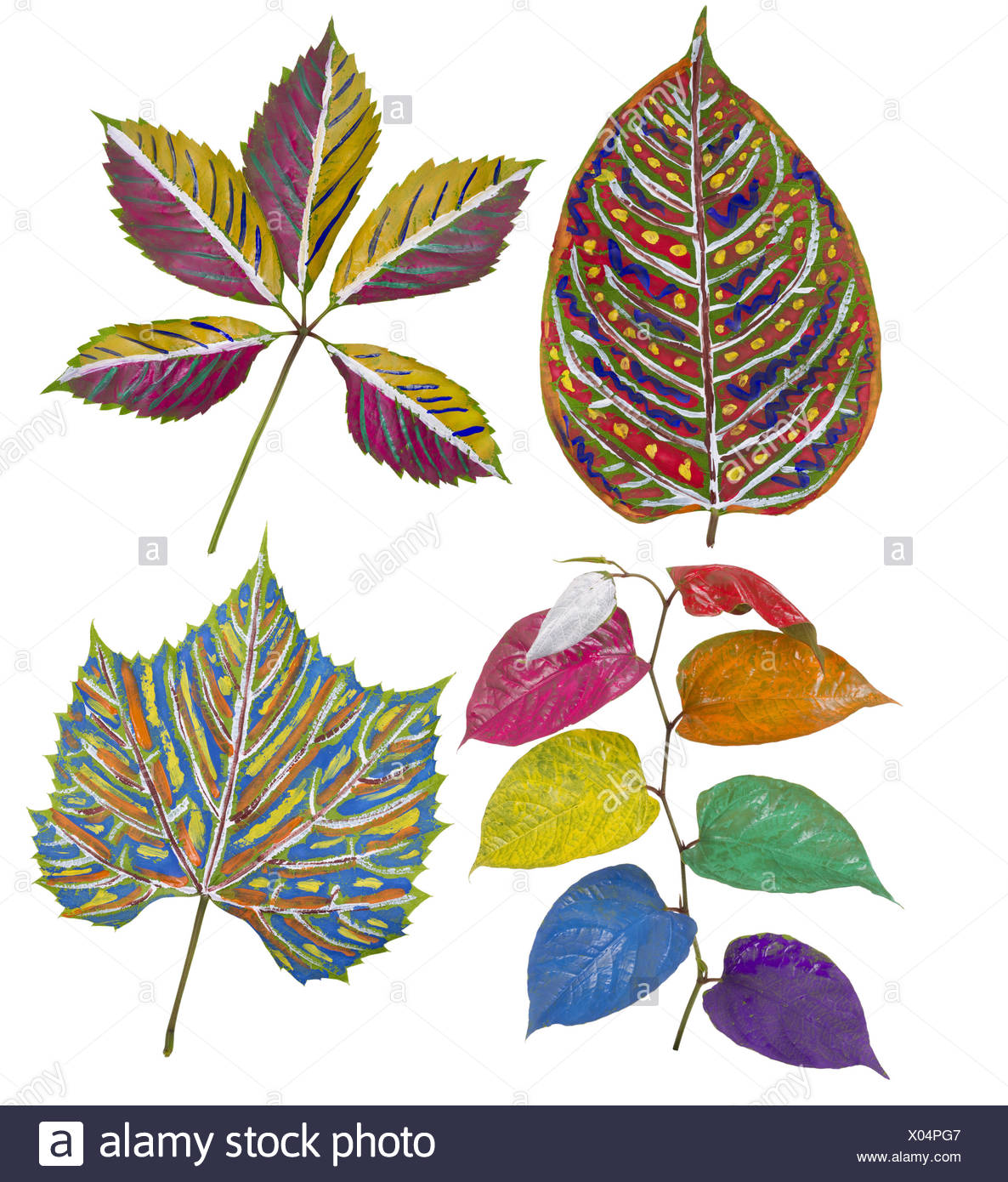Primitive  painted leaves set - Stock Image
