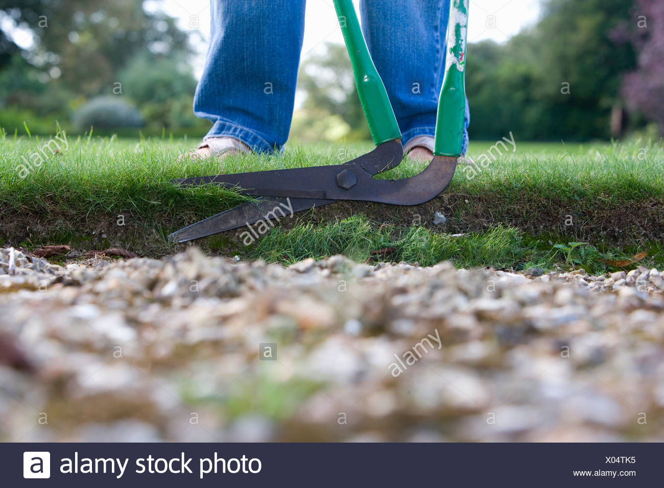 Man trimming edge of grass with garden tool, low section - Stock Image