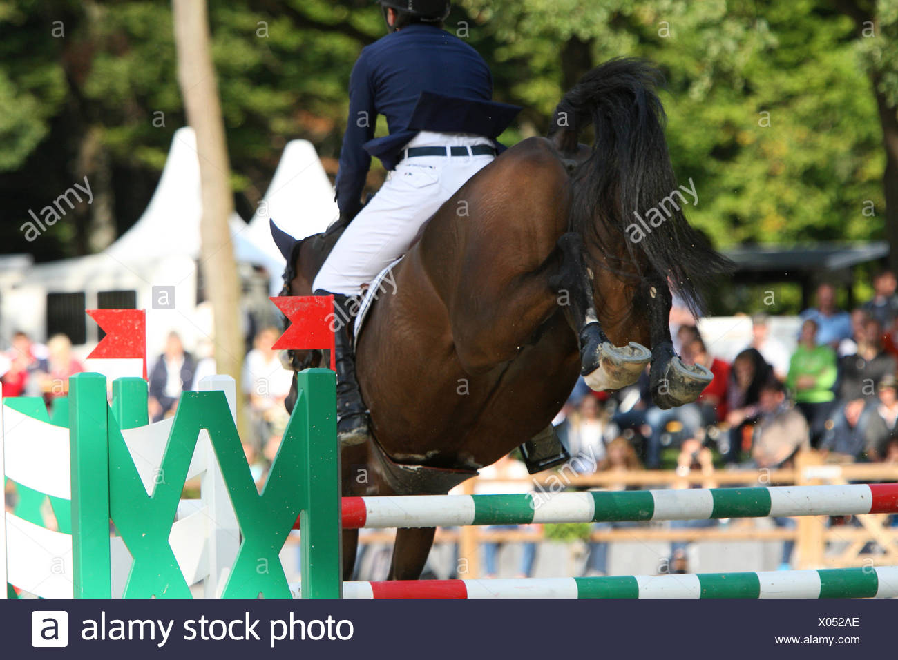 brown horse jump over a barricade - Stock Image