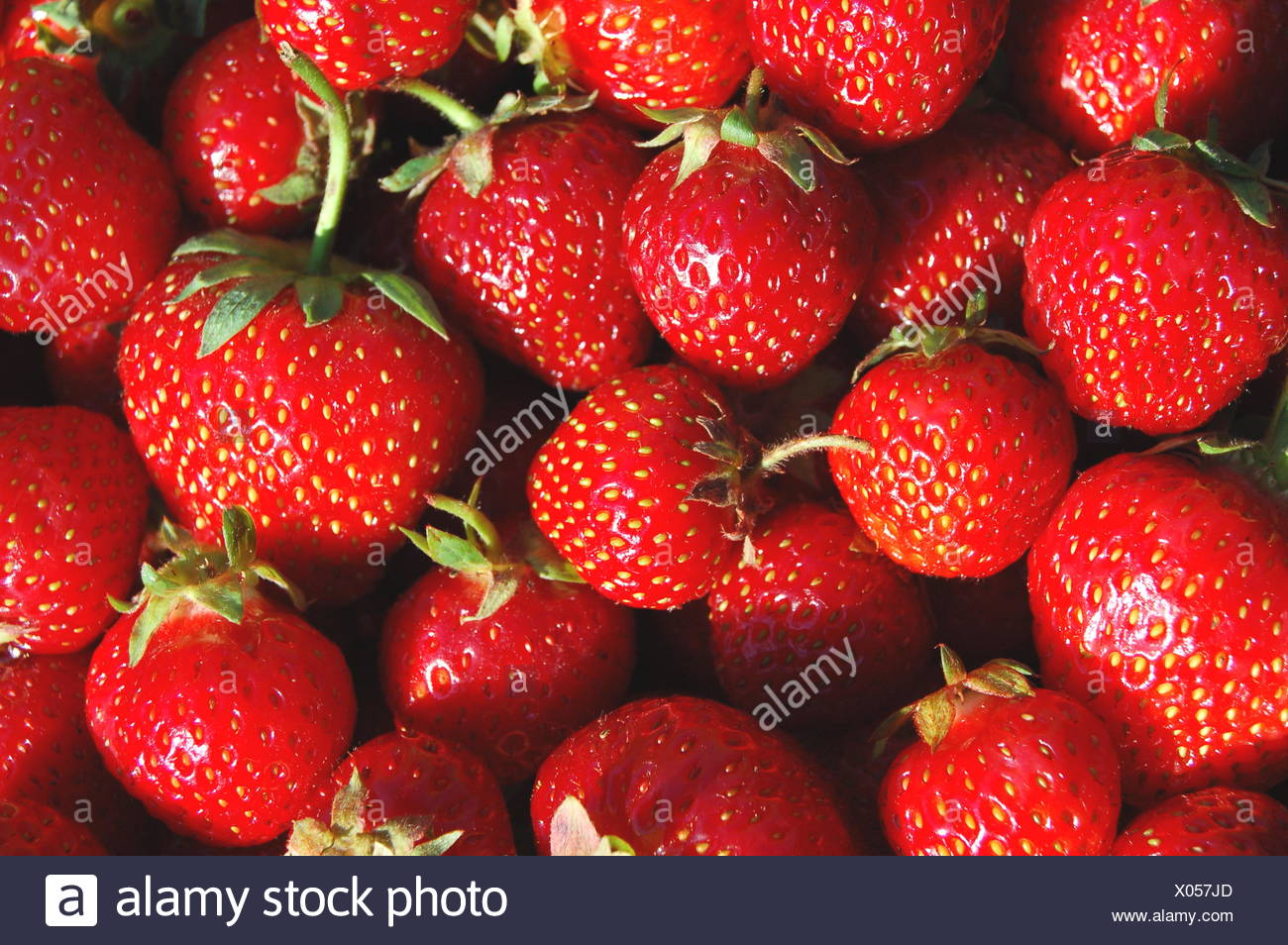 soft spring bouncing bounces hop skipping frisks jumping jump fruit strawberry juicy red food aliment health eco sweet green - Stock Image