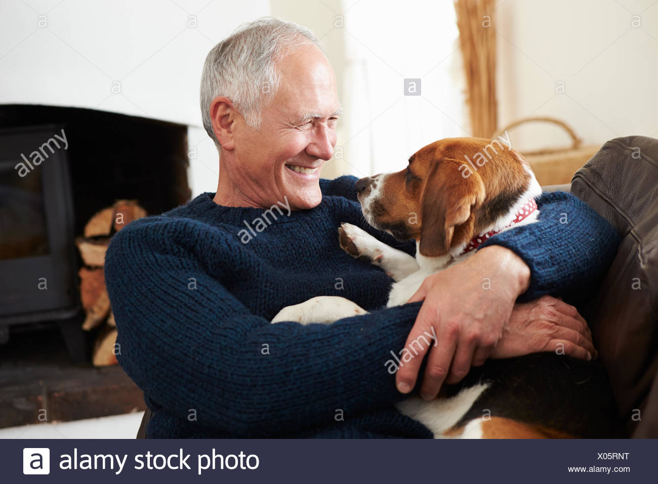 Senior Man Relaxing At Home With Pet Dog - Stock Image