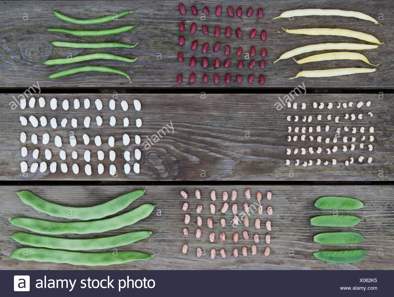 Neatly arranged legumes on wooden table - Stock Image