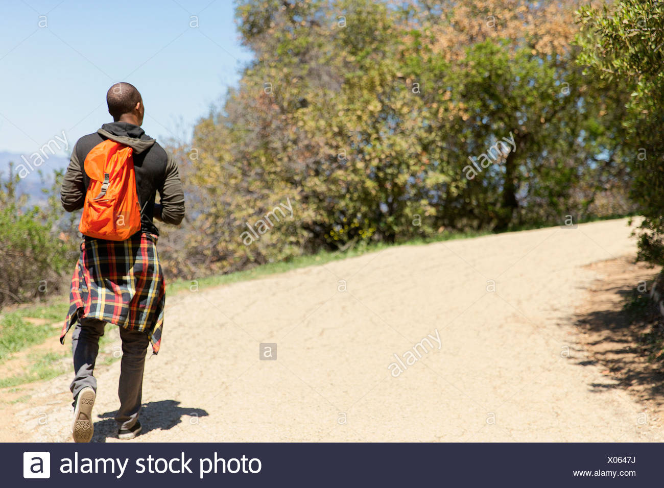 Young man with backpack strolling in park - Stock Image