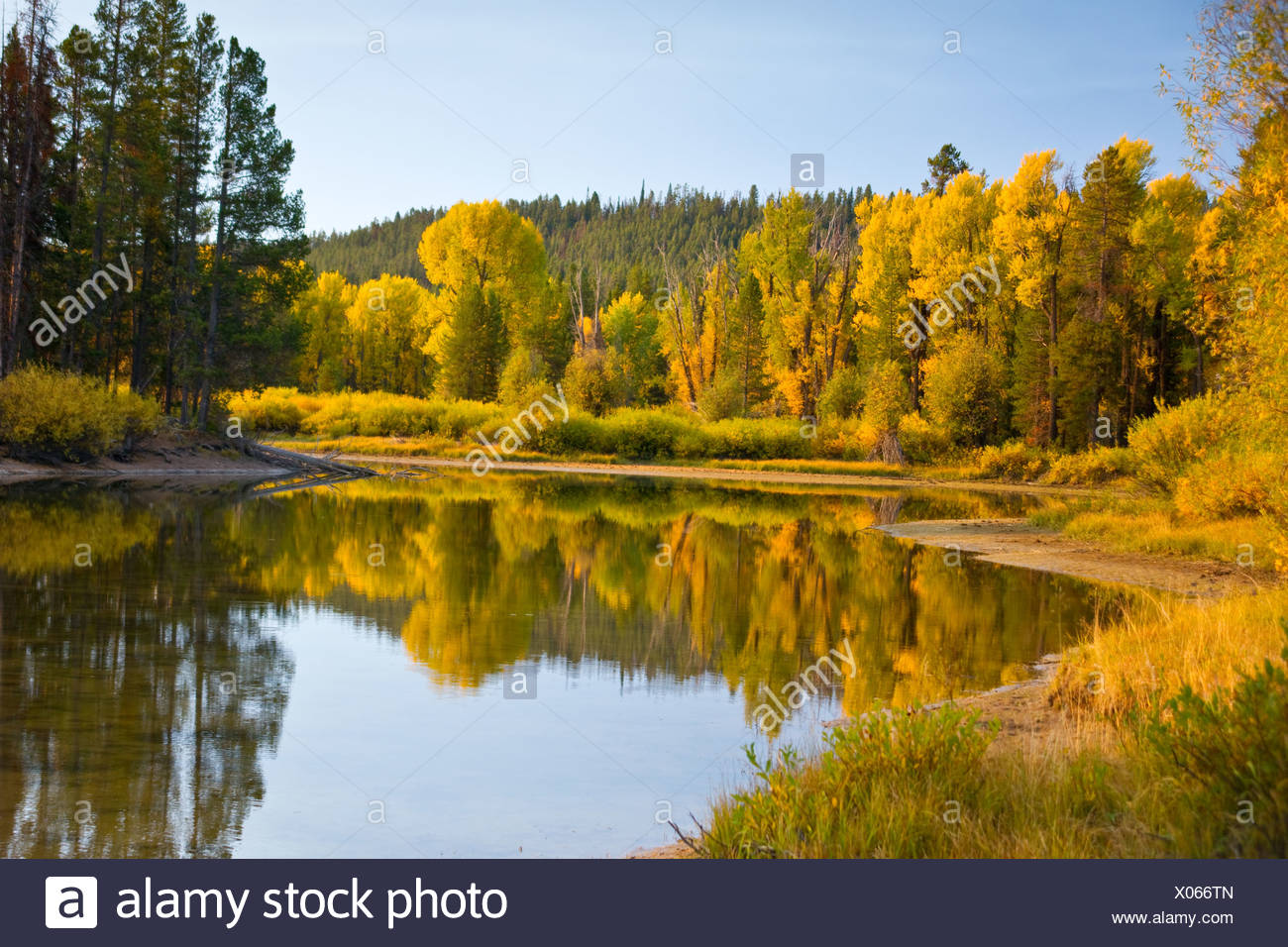 Autumn reflections at a secluded pond in Grand Tet - Stock Image