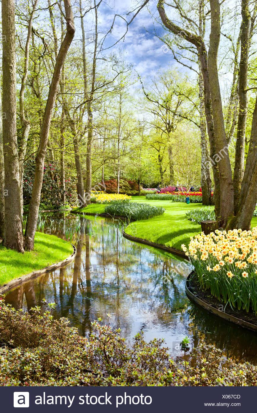 Lisse, Keukenhof (Netherlands) - Stock Image