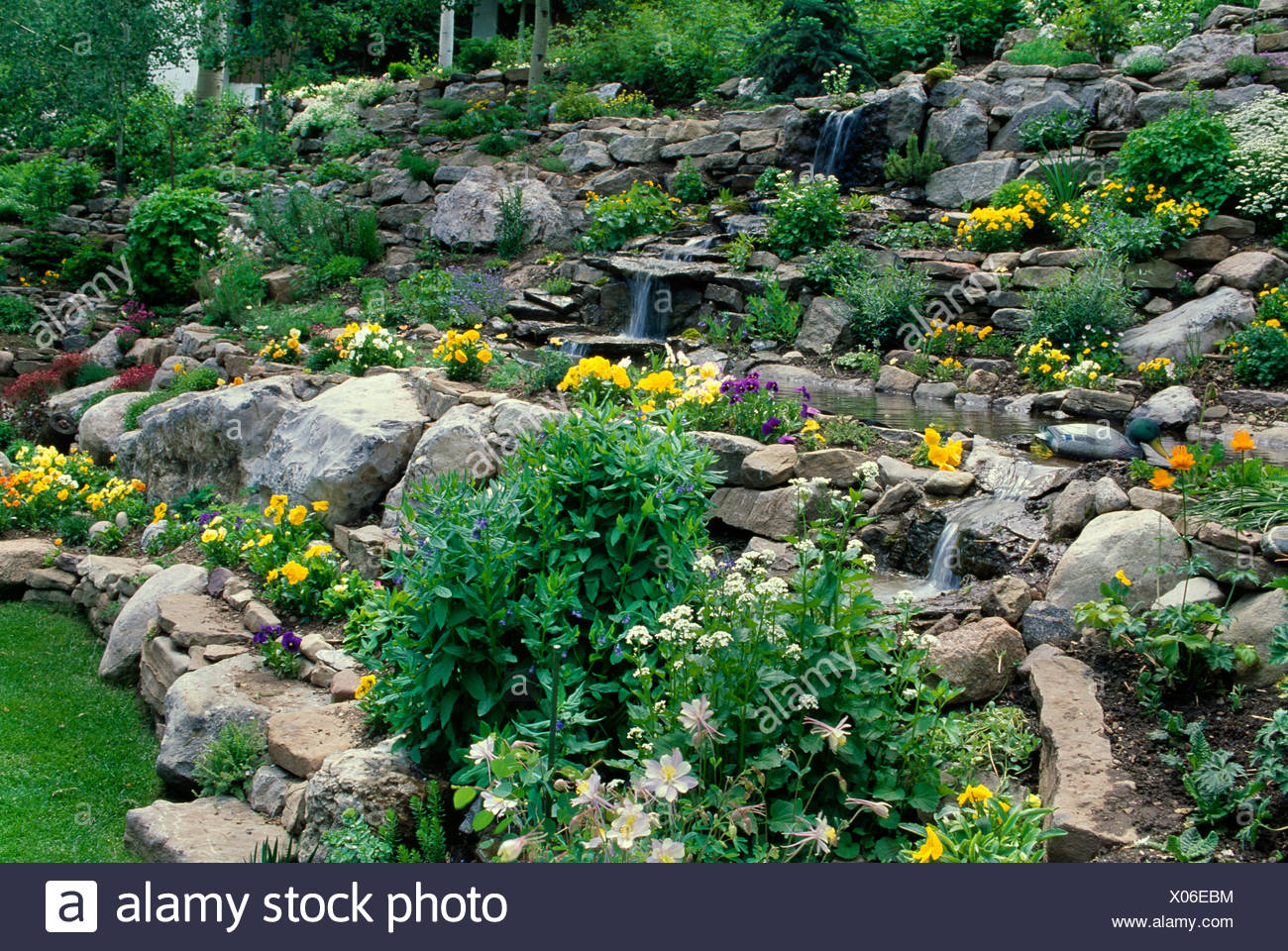 Rock Garden With Terraces Of Pansies Columbines And Water Feature