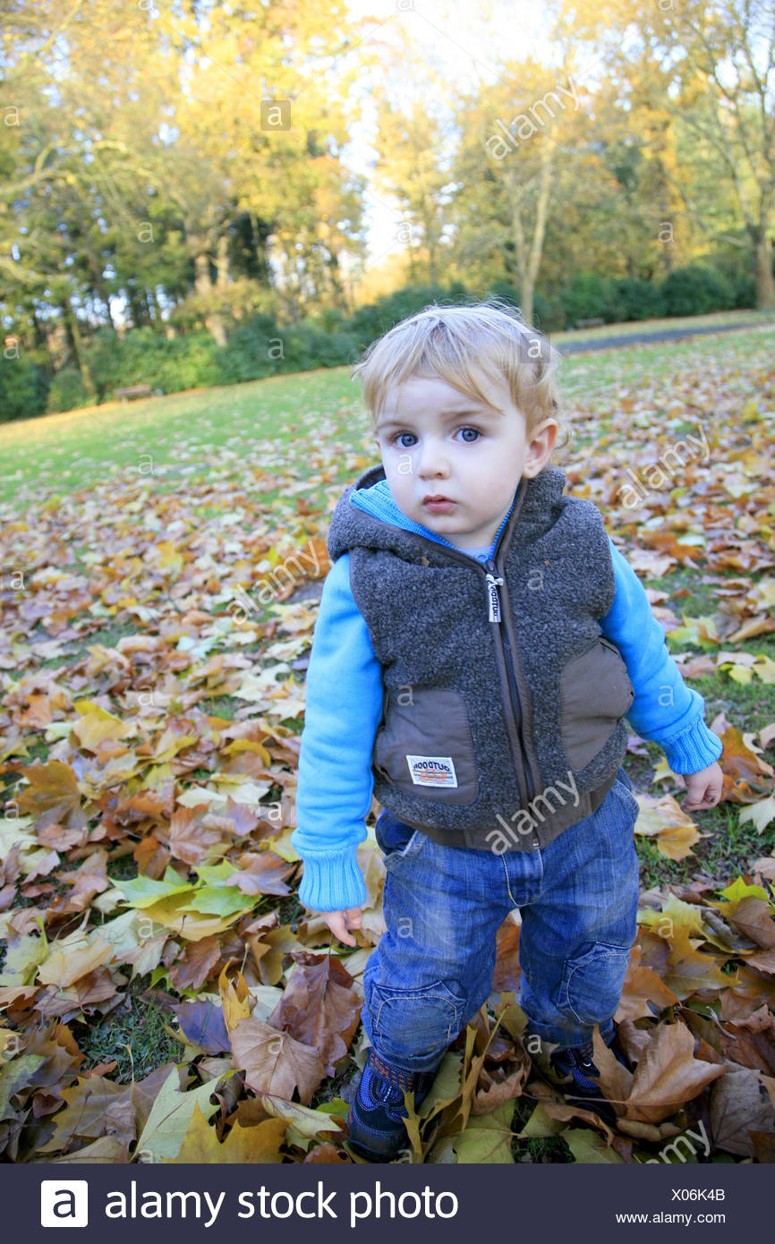 little boy standing on autumn foliage covered lawn Stock Photo