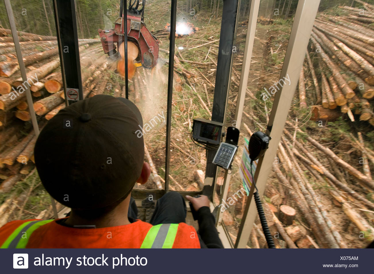 Operator working processor hoisting cutting 2nd - Stock Image