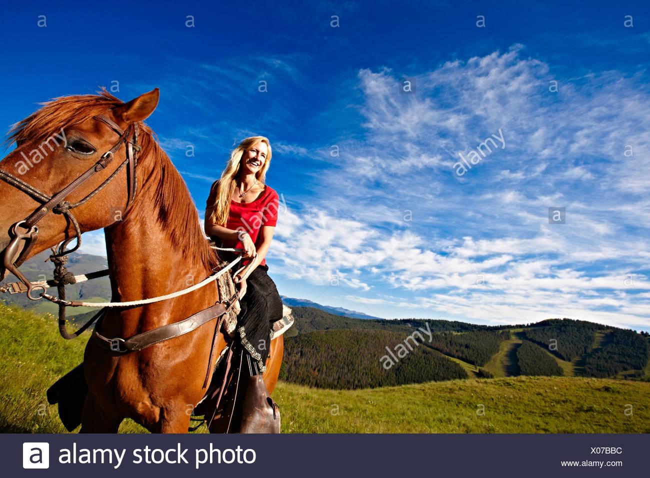 Summer horseback. - Stock Image