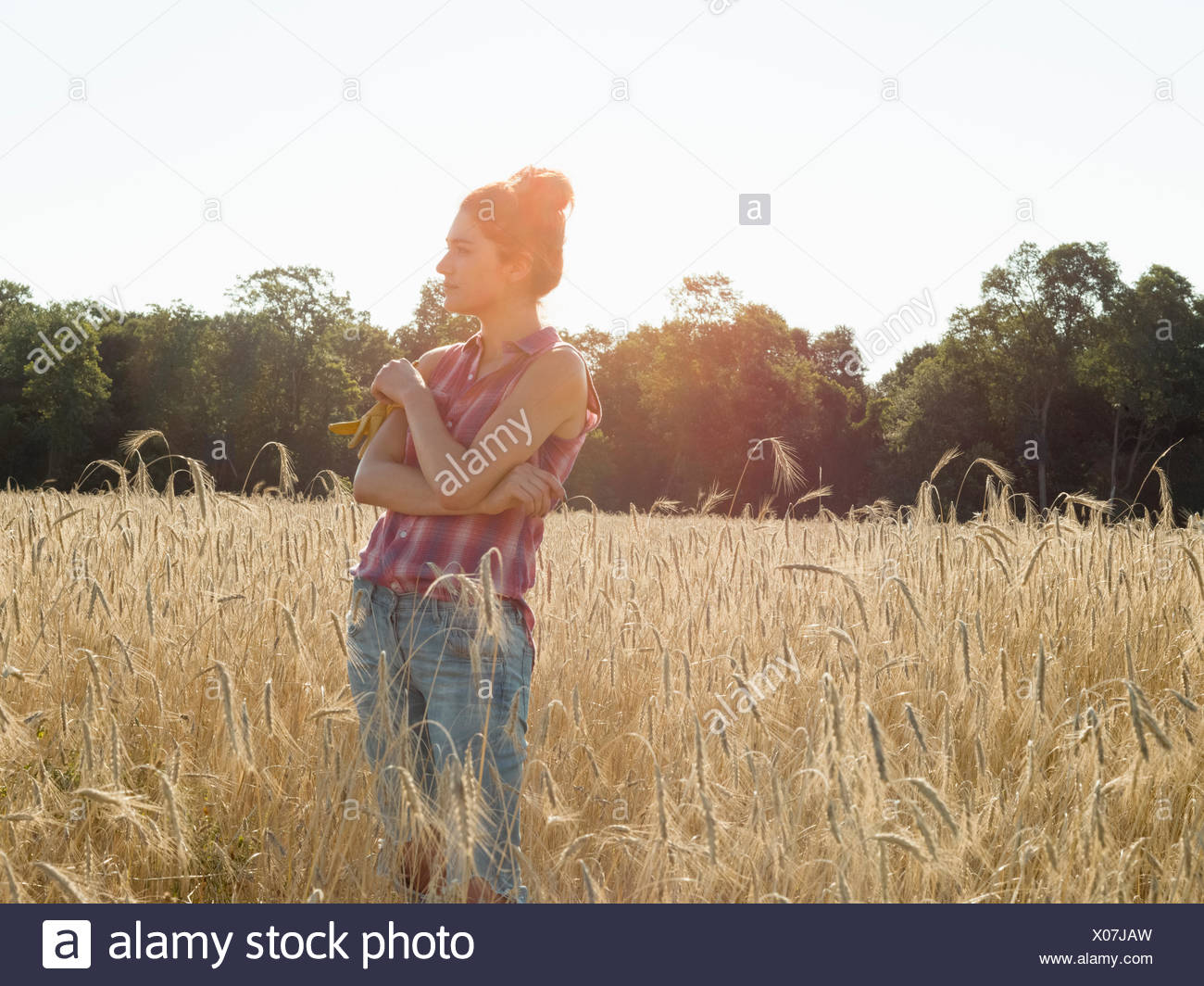 Young woman wearing a checkered shirt standing in a cornfield. - Stock Image