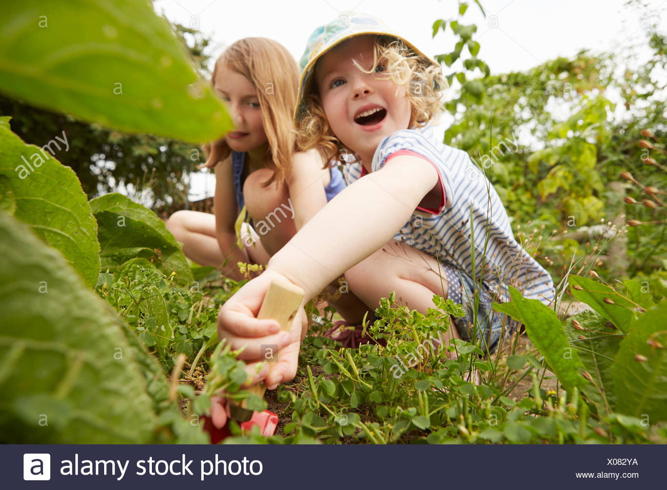 Two sisters crouching and digging in garden - Stock Image
