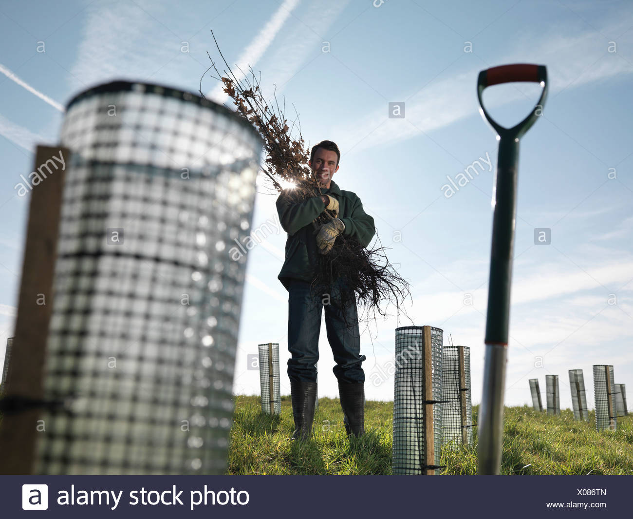 Man With Handful Of Young Trees Stock Photo