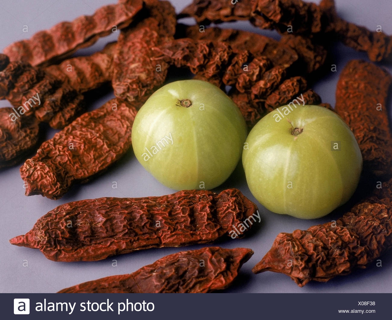 Indian Gooseberry, Emblica officinalis; These are medicinal plants Stock Photo