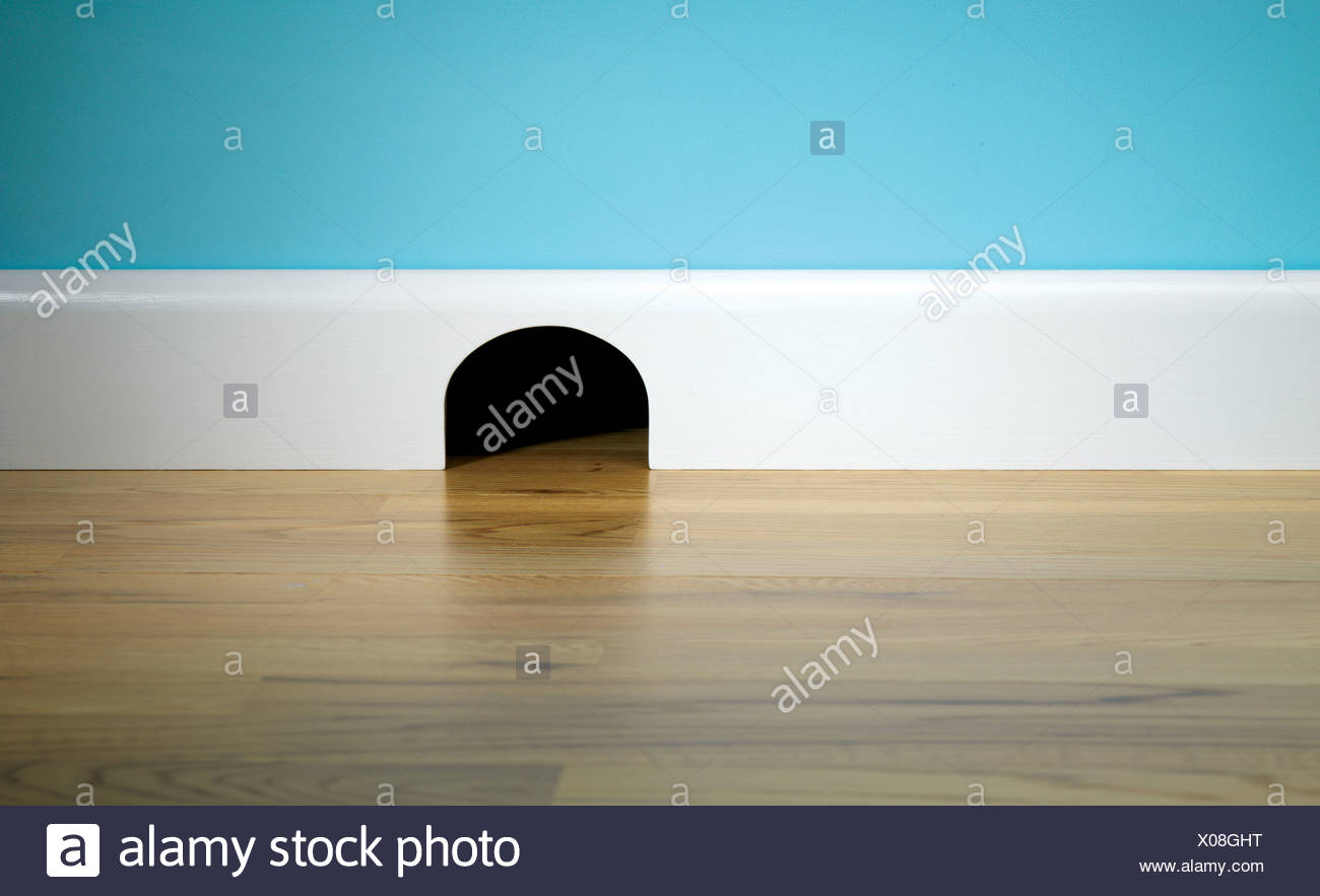 Mouse hole in skirting board Stock Photo