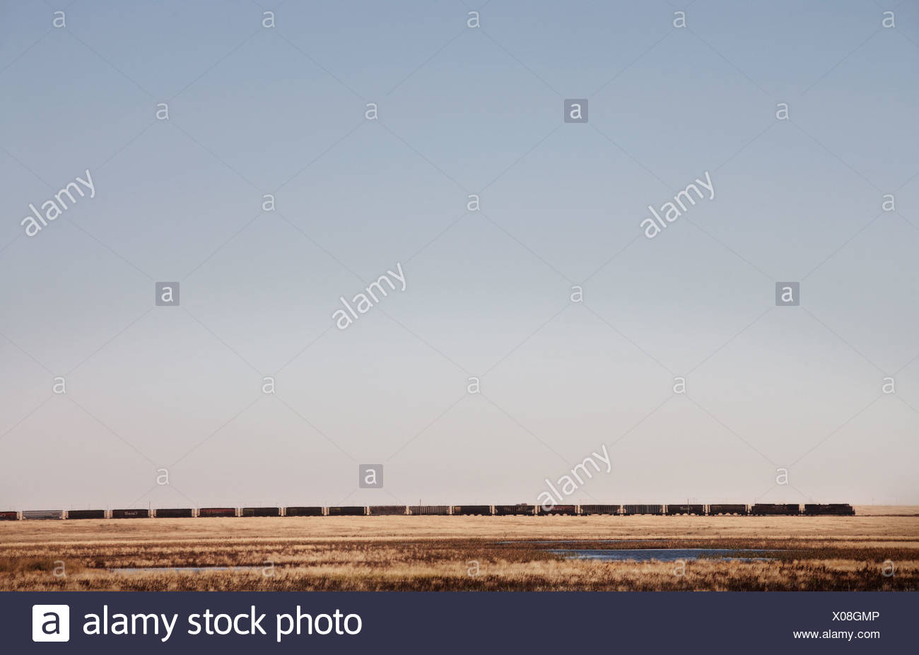 A train rolls across the Canadian prairies in southern Alberta. - Stock Image